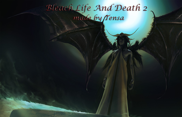 Bleach : Life and Death 2