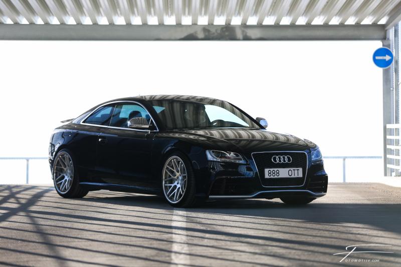 masuurik: Accuair Audi 5 Quattro 152A4751