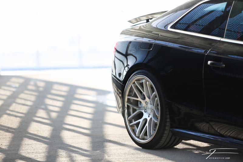 masuurik: Accuair Audi 5 Quattro 152A4757