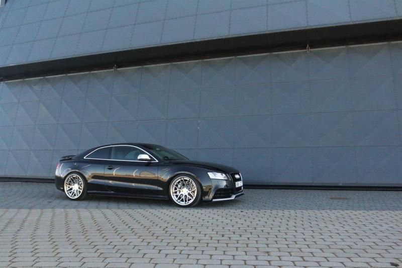masuurik: Accuair Audi 5 Quattro IMG_6312