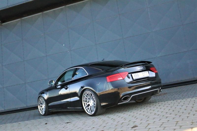masuurik: Accuair Audi 5 Quattro IMG_6339