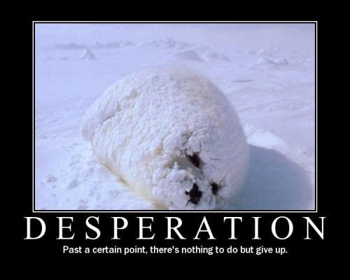 desperation.jpg