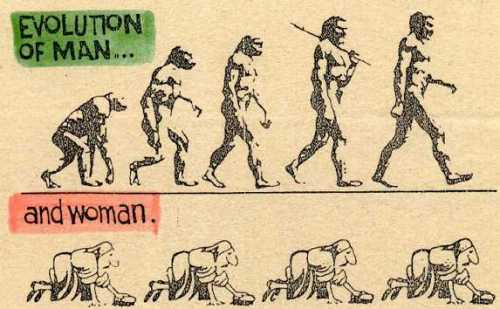 evolutio.jpg