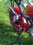 """Riga """"Chopper"""" Mini"""