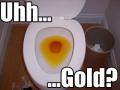 onionbob-uhgold.jpg